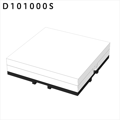 D101000s s