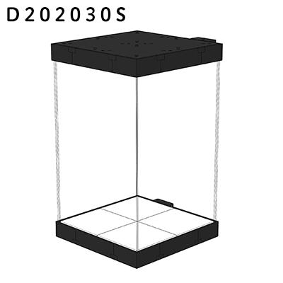 D202030s s